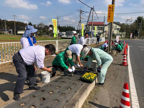 国道沿いの花壇に皆で花の苗を植えよう
